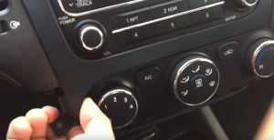 3. Remove the trim panel with your hands